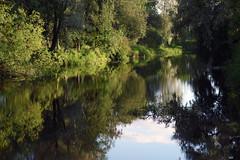 Pirita jõgi (Jaan Keinaste) Tags: pentax k3 pentaxk3 eesti estonia lagedi piritajõgi jõgi river peegeldus reflection