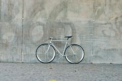Build01 – Vitus Seven Dural _DEF2822 (jesuspark) Tags: bike bicycle build vitus seven dural campagnolo record syncro vento brooks cambium nitto gipiemme