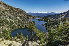 Estany Tort de Peguera (sostingut) Tags: llacspirineus pirineos nikon d750 tamron verano cordillera valle