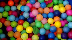 Color es... (mayavilla) Tags: colores color colors pelotas juguetes alberca colorfull fiesta bolitas circulos
