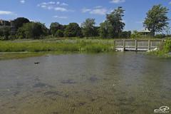 Samuel Myers Park (JBtheExplorer) Tags: samuel myers park racine wisconsin lake michigan shoreline shore restoration water bridge wetlands