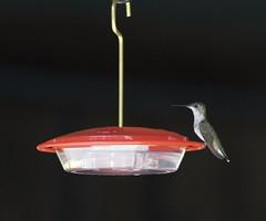 at the trough (Mark.Swanson) Tags: funksgrove illinois sugargrovenaturecenter hummingbird rubythroated feeder