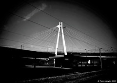DSCN2865_3.2 (patric.gangler) Tags: ludwigshafen hauptbahnhof gleis4 blackandwhite schwarzweis fineart blackandwhitephotography nikonfotografie nikonphotography nikonphotographers coolpixusers coolpixers nikon coolpix b500 weitwinkel 225mm brücke hängebrücke