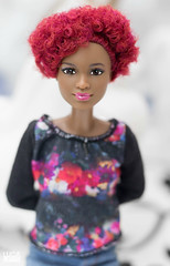 . (LeoDOLL81) Tags: barbie aa afro black madetomove made move fashionistas