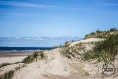 Pembrey Sands (Elle.Rebecca Photography) Tags: summer hot sun sunny grass dunes water ocean sand sea beach carmarthenshire carmarthen uk wales pembreysands pembrey