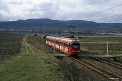 Rhein-Haardt-Bahn 1019 fahrt von Bad Dürkheim in Richtung Gönnheim, 14.03.1992 (Tramfan2011) Tags: strasenbahn düwag rheinhaardtbahn rhb 1000mm tram germany deutschland tranvia tramway weinstrase weinberge berge