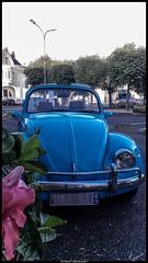 La coccinelle bleue (Fotomaniak 53) Tags: coccinelle volkswagen bleue blue car terrasse samsung a5 2016 phonephotography