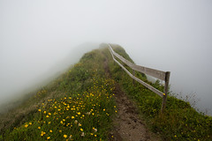 Through The Clouds (Cornelli2010) Tags: acores azoren azores canoneos5dmarkiii clouds cloudy crater faial fog foggy landscape nature portugal trail volcano wolke wolken