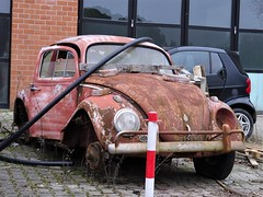 Volkswagen Beetle (Alessio3373) Tags: scrap scrapped scrappedcars rust rusty rusted rustycars corroded corrosion ruggine abandoned abandonedcars autoabbandonate unused unloved neglected forgotten forgottencars junk junkcars volkswagen volkswagenbeetle kafer volkswagenkafer wreck wrecked wreckedcars