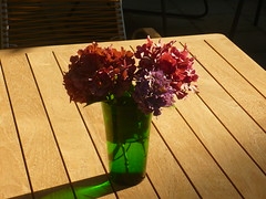Hortensieblüten-Strauß (Jörg Paul Kaspari) Tags: parkgarten sommer summer hydranten hortensienblütenstraus blumenstraus vase tisch rot rosa