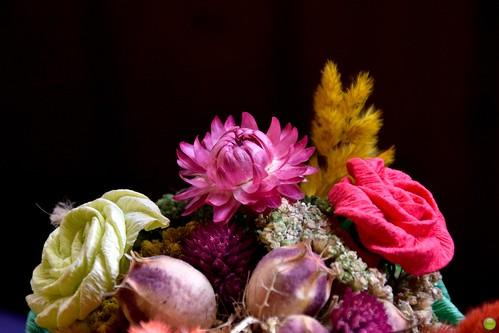 Dry & paper flowers