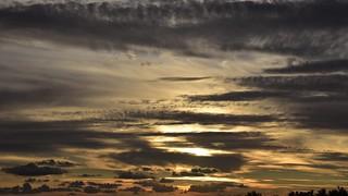 Zufälliger Blick aus meinem Fenster am Abend; Bergenhusen, Stapelholm (8)