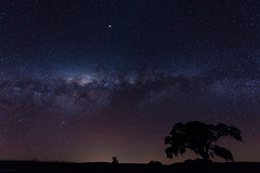 Milky Way Legend Tree (GilsonTristan) Tags: paraná brazil milyway sengés