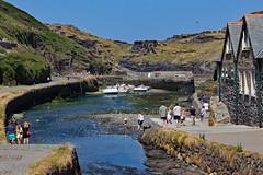 IMG_4003_edited-1 (Lofty1965) Tags: boscastle cornwall harbour