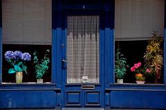 Pont-Aven (Massimo Frasson) Tags: francia france bretagna bretagne breizh bzh finistère pontaven centrostorico oldcity pittoresco architettura arte medioevo scuoladipontaven impressionismo paulgauguin porta negozio vetrata vetrina fiori blu azzurro