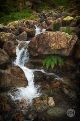 7 @ Waterfall Wonders (Marcell Jarvas) Tags: lakedistrict waterfalls water rocks cumbria river stream greendale gill wastwater zeiss loxia sony sonya7ii