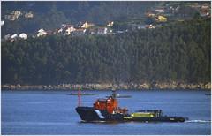 remolcador_ria de vigo_ria de marin_20_06_2018 (maxnemo) Tags: maxnemo shipbarcovesselmercantemarocéanoseaoceanmarínfactoríanavaldemaríngaliciamaxnemomaxnemo remolcador tugboat