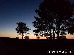 Sunrise (madmax557) Tags: sunrise england eastanglia uk greatbritain norfolk earlymorning trees countryside landcape nights nightphotography nightphotos nightshots nighttime silhouettes