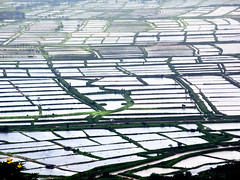 Fish ponds (MelindaChan ^..^) Tags: water blue sky cloud weatehr fine wind power windmill windturbine china 廣海 taishan 台山 rural village bay chanmelmel mel melinda melindachan fish ponds life countryside