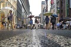 FEEL THE RAIN (ajpscs) Tags: ©ajpscs ajpscs japan nippon 日本 japanese 東京 tokyo city people ニコン nikon d750 tokyostreetphotography streetphotography street seasonchange rainyseason tsuyu 梅雨 2018 strangers walksoflife streetoftokyo rain ame 雨 雨の日 whenitrains 傘 anotherrain badweather whentheraincomes cityrain tokyorain attheendoftheday wetstreet noplaceforthesun umbrella whenitrainintokyo arainydayintokyo nosuntoday feeltherain