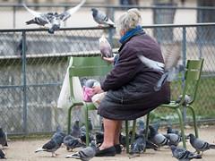 MrUlster 20170310 - Paris - P3103239 (Mr Ulster) Tags: pigeons france elderly park paris travel feeding