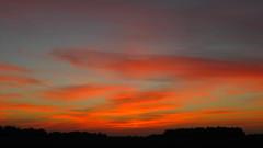 Beautiful sunrise 08/12/2018 Sumy reg. Ukraine. (ALEKSANDR RYBAK) Tags: рассвет восход утро солнце свет небо облака волшебство драматизм лето погода сезон dawn sunrise morning sun shine sky clouds magic dramatic summer weather