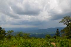 DSC_3771 (ZheniaZ) Tags: shenandoahpark cutedog blueridgemountains