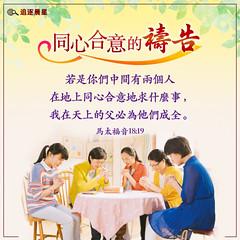 圣经金句-祷告-祷告金句 (追逐晨星) Tags: 马太福音 圣经金句 金句卡片 金句图片 弟兄姊妹 灵修