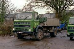 Leyland Clydesdale, SWL 297X (ergomammoth) Tags: lorry lorries truck trucks leyland leylandclydesdale leylandscotstoun tipper supergcab britishleylandtruckbusdivision tsthomassonslydneyltd roadtransport haulagecontractors quarryowners lydney forsetofdean gloucestershire glos