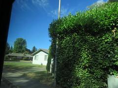 IMG_5498 (Andy E. Nystrom) Tags: tumwater washington wa tumwaterwashington