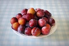 Canon EOS 60D - 2018 Plum Harvest! (TempusVolat) Tags: picmonkey plum plums harvest garden 2018 garethwonfor tempusvolat gareth wonfor tempus volat mrmorodo fruit bowl stilllife canon eos 60d
