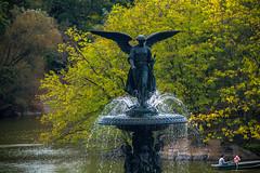 (maxinepowerr) Tags: newyork thebigapple city landscape centralpark park