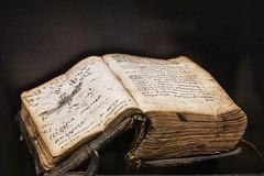 old book (A.K. 90) Tags: book old handel museum buch braun alt ausgestellt ausstellung sonyalpha6000 e18135mmf3556oss zoom makro writing schrift tinte vergilbt