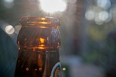 Beer o'clock (OzzRod) Tags: pentax k1 hdpentaxda35mmf28macroltd macro bottle amber flare sunstar bokeh intothesun dailyinaugust2018