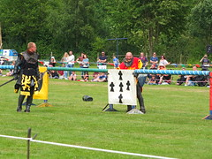 DSCF3795 (SierPinskiA) Tags: ruffordabbeycountrypark rufford knightsofnottingham fujixs1 jousting medieval horse knights goldeneagle falcon
