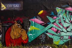 Jash Char1 (Rodosaw) Tags: lurrkgod getchamans chicago graffiti documentation street art graffitiart jash d30 att pc