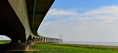 SECOND  SEVERN CROSSING (chris .p) Tags: bridge severn crossing nikon d610 wales uk secondseverncrossing monmouthshire summer 2018 view capture june water