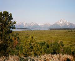 Grand Teton NP, view from Jackson Lake Lodge (roidelapatate) Tags: plaubelmakina67 kodakektar100 67 grandteton