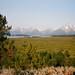 Grand Teton NP, view from Jackson Lake Lodge