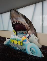 Promotion for The Meg (mikecogh) Tags: glenelg cinema promotion shark teeth jaws sharp megal film movie