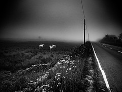 rnor80642.jpg (Robert Norbury) Tags: fuckit somearelandscapessomearenot icantbearsedkeywording fineartphotography blackandwhite photographer itdoesntmatterwhattheyarepicturesoftheyarejustpictures itdoesntmatterwhattheyarepicturesoftheyarejustpictur