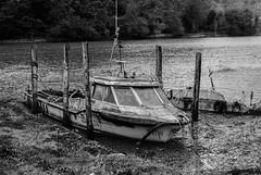 Abandoned (kayleighclarke7) Tags: newryriver carlingfordlough narrowwaterkeep mournemountains cooleymountains boats river