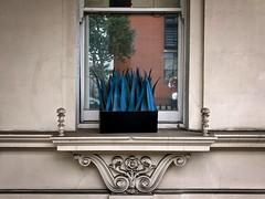 Blue leaves (sixthland) Tags: blipfoto blue cameraphone iphonex plant windowsill