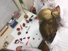Warsztaty na Wydziale Biologii Uniwersytetu Gdańskiego 06.2018