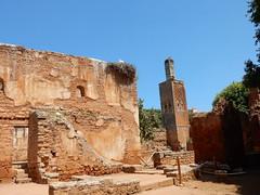 Chellah, Minaret and Laclacs (Mulligan Stu) Tags: cigogne stork laclac berber phoenician almohad morocco phoenicianruins rabat romanruins roman marinid chellah maroc