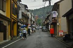 DSC_0014 (sxcxxhx) Tags: japan osaka kyoto hydrangea flower trip voyage 日本 大阪 京都 旅行