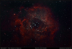 NGC2237, the Rosette Nebula (2018 version) (Andries Cafmeyer Astrophotography) Tags: ngc2237 rosette nebula celestron cgx skywatcher explorer 150pds newtonian reflector canon eos 6dmarkii zwo asi 120mm apt astro photography tool phd2 guiding lightroom photoshop adobe dss deep sky stacker noiseless