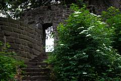 entrance to the rear castle (Cloudtail the Snow Leopard) Tags: eingang castle schloss neuenbürg neuenbuerg burg ruine ruin entrance