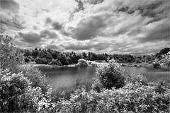 18-171 (lechecce) Tags: 2018 landscapes nature blackandwhite art2018 sharingart blinkagain flickraward digitalarttaiwan awardtree artdigital netartii