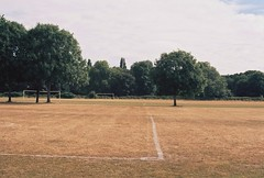 a parched pitch (elin*) Tags: kodakporta400 35mm olympusom10 50mmlens heatwave buteparkcardiff